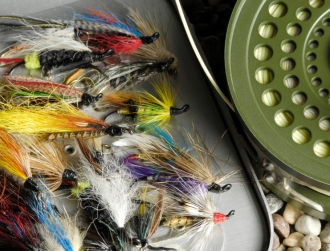 Rockbourne flies