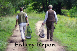 Fishery Report